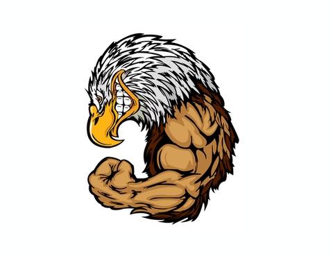 Eagle Illustration Design